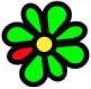 ICQ 6 