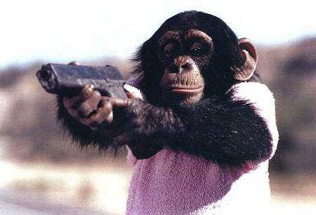 תן לי את הבננה!