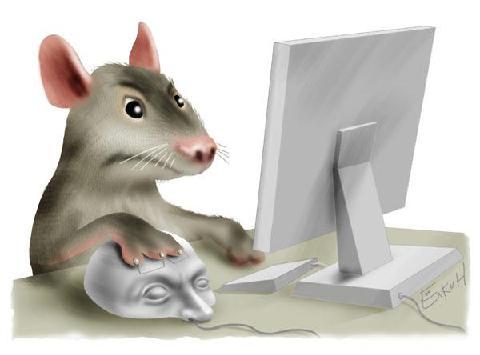 הנקמה של העכבר