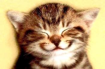 תנו חיוך הכל לטובה