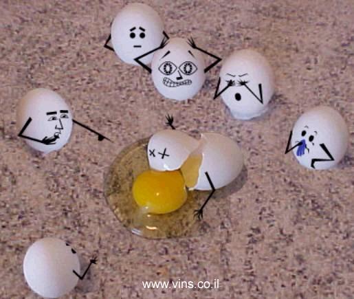 ביצה מקיאה