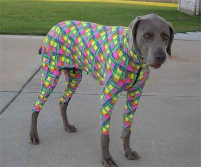 אתה בטוח שלא יצחקו על הפיג'מה שלי?