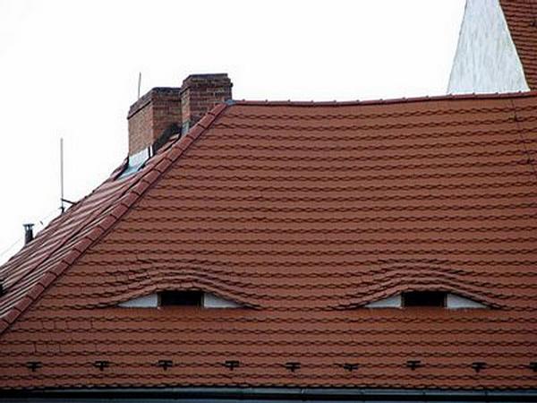 גג עם עיניים