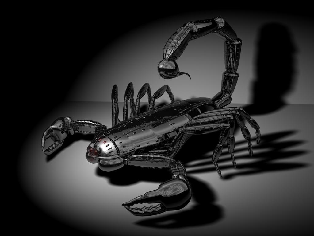 עקרב רובוט