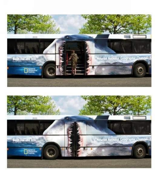 אוטובוס כריש!