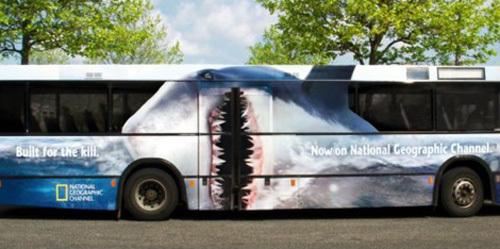 אוטובוס כריש