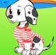 תלבושת לכלב