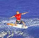 גלישת גלים מקצועית